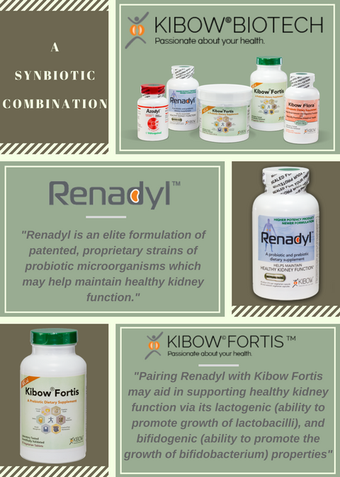 Synbiotic - Renadly & Kibow Fortis